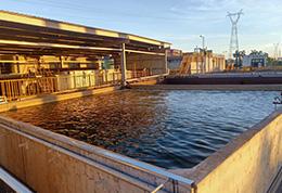 我司废水零排放项目正式成功通过验收